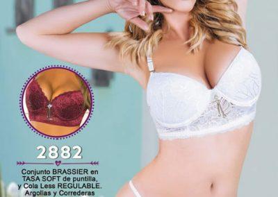 Art-2882-conj-brassier-tasa-soft-puntilla-colaless-regulable-argollas-y-correderas-cromadas-desmontables-85-al-110-blanco-negro-ciruela-y-gris